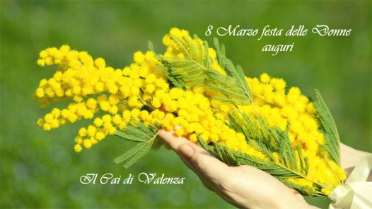 olio-essenziale-di-mimosa
