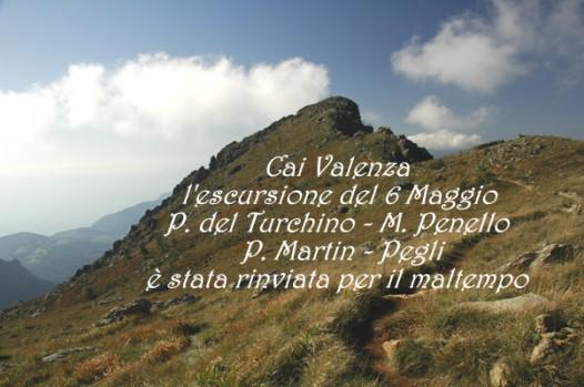 Martin_vetta (1)