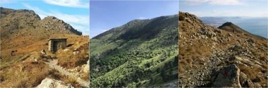 Escursione ad anello da Arenzano al Monte Pidoocchio, foresta del Lerone, Riviera delle Palme  Dislivello: ±970 m Lunghezza: 13 km